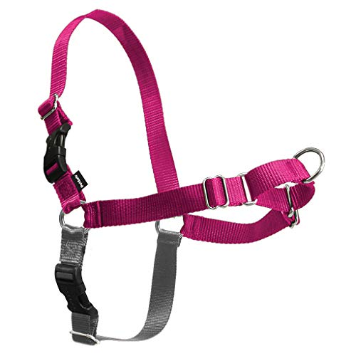 PetSafe Easy Walk Dog Harness, No Pull Dog Harness, Raspberry/Gray, Medium/Large