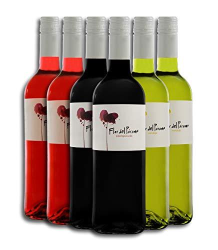 Vino Tinto (x2ud) + Vino Rosado (x2ud) + Vino Blanco (x2ud) - Leyenda del Páramo - Vino Flor Del Páramo - Vino Premiado - Caja de 6 botellas de 0,75 L.