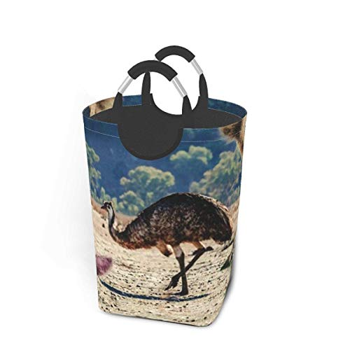 Collage Animals Living Australia Emu Koala Large Laundry Basket Sea Fish Tail Collapsible Laundry Hamper with Handles Waterproof Durable Clothes Washing Bin Dirty Baskets Storage for Home College Dorm