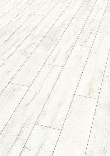 Egger Comfortboden EHC023 Fortland Eiche Weiss (8mm, 1,995m²)   Natürlich & nachhaltig   Kork Laminat mit Trittschalldämmung   Einfache Verlegung durch CLIC It Klicksystem   Warm & leise