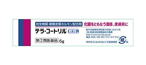 【指定第2類医薬品】テラ・コートリル軟膏a6g