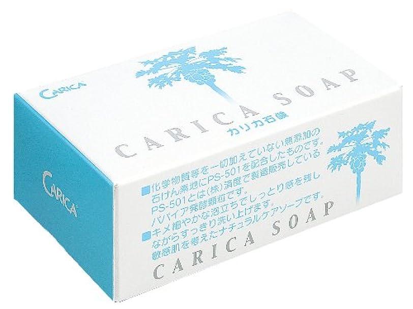 継承費用気晴らしカリカ石鹸100g