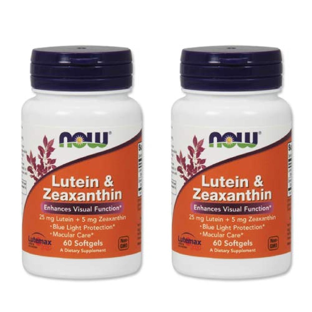 壁発言する伝染性の2個セット ルテイン ゼアキサンチン 60ソフトジェル