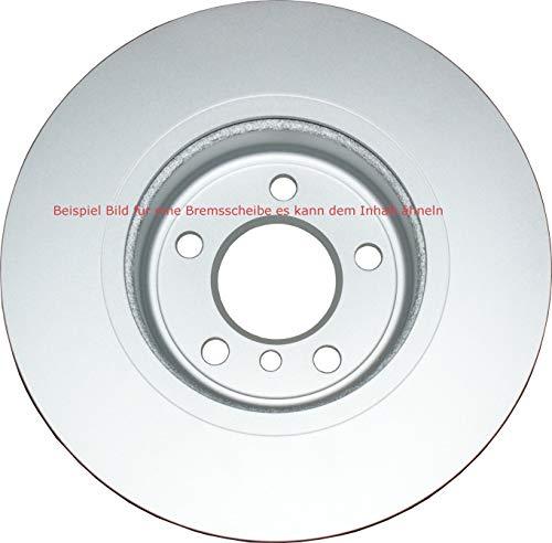 Preisvergleich Produktbild REGIUM CQ8454 Bremsscheibe Vorderachse,  2 Stück Polo IV (6N1 / 6N) 1, 4l Lupo (6X1 / 6X) 1.0L Polo IV (6N1 / 6N) 1.0L Polo V (6N2 / 6N)