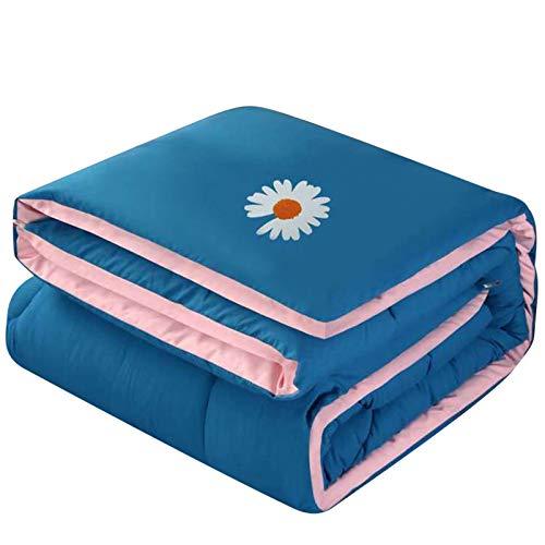 YRRA Bicolor Steppdecke, zweifarbig, aus Seide, doppelseitig, reine Baumwolle, warm, warm, weich, für den Winter, Blau, 200 x 230 cm (1,5 kg)