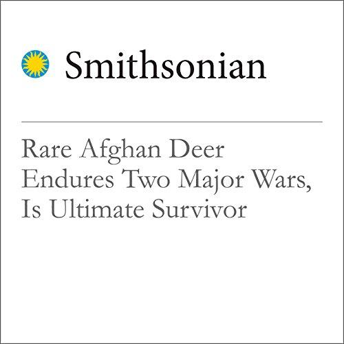 Rare Afghan Deer Endures Two Major Wars, Is Ultimate Survivor cover art