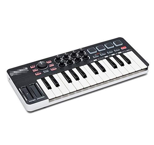 ACVXZ Mini 25 Teclas Portátil Electric Piano Piano Midi...