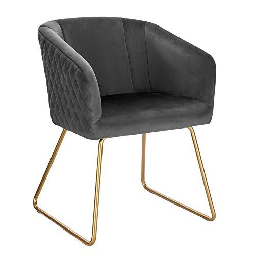 WOLTU BH271dgr-1 1x Esszimmerstühle Küchenstuhl Polsterstuhl Wohnzimmerstuhl Sessel mit Armlehne, Sitzfläche aus Samt, Metall...