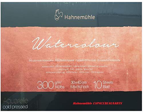 Hahnemühle - Papel para acuarela (100% algodón, mate, 300 g/m², 30 x 40 cm, 10 hojas)