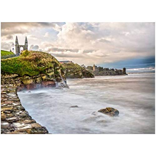 DIY Paint by Numbers The Coast Line of St Andrews in Scotland for Adults Kids Beginners Painter Colorful Oil Paintings Gift Kit with Paintbrushes 16x20inch