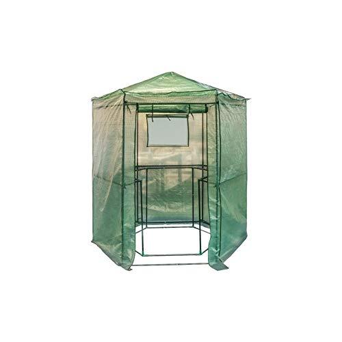Gewächshaus sechseckig für Gemüse–Garten