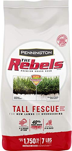 Pennington The Rebels Tall Fescue Grass Seed Blend