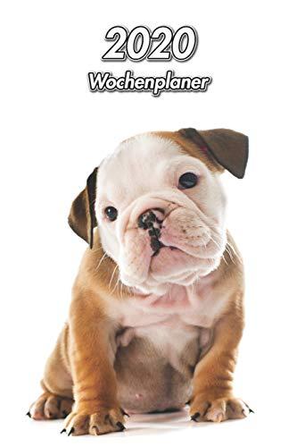 2020 Wochenplaner: Englische Bulldogge Welpe   107 Seiten, 15cm x 23cm ca. A5   Taschenkalender   Terminplaner   Tagebuch   Terminkalender   Organizer für Hundeliebhaber