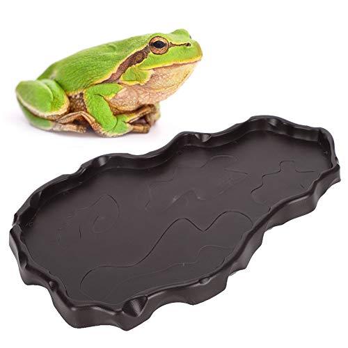 Winnfy Reptiles de Plástico Cuenca del Alimentador Reptiles Plato de Alimentación para Beber Decoraciones del Paisaje Cuenco de Reptiles para Tortuga Serpiente de Maíz