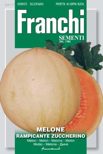 Seeds of Italy Franchi Graines de Melon grimpant