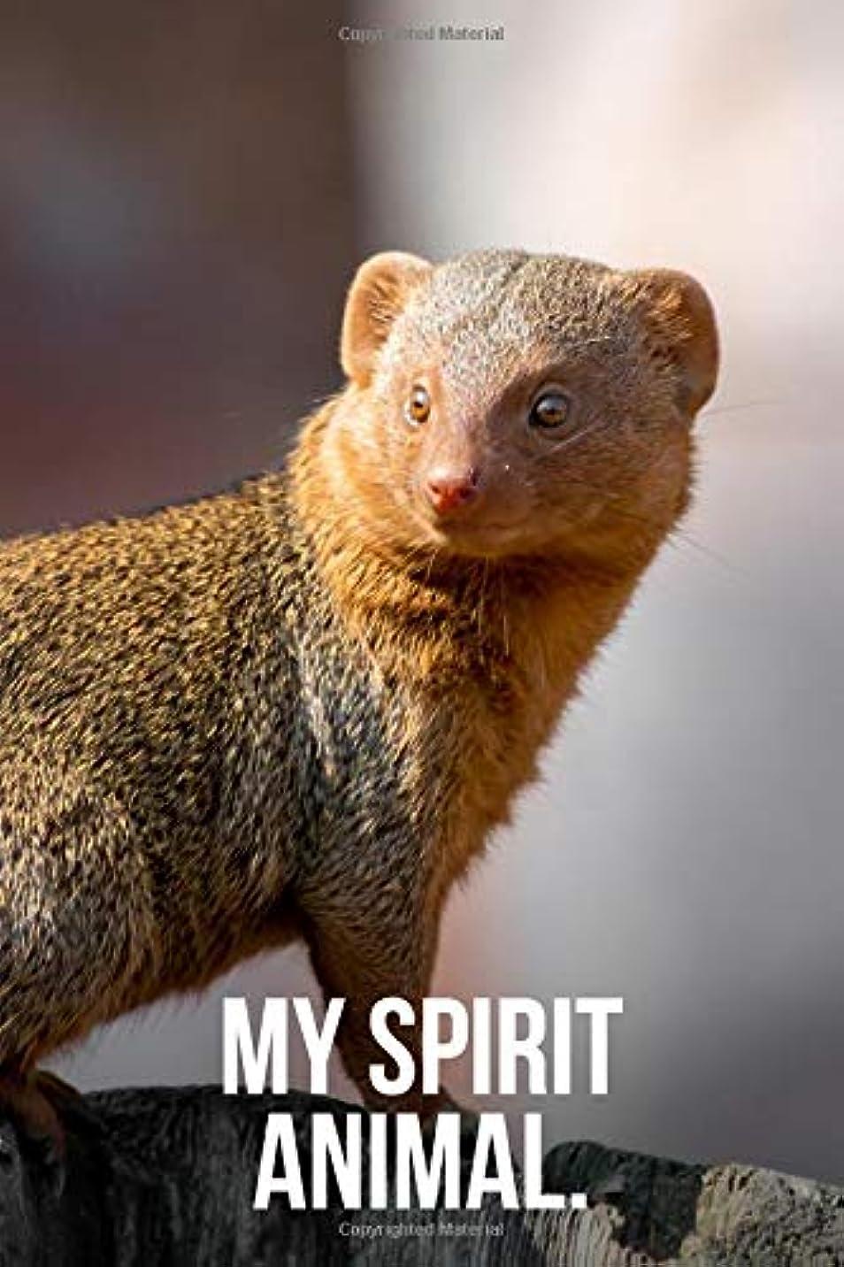 と闘うボクシング書士My Spirit Animal: Mongoose Journal