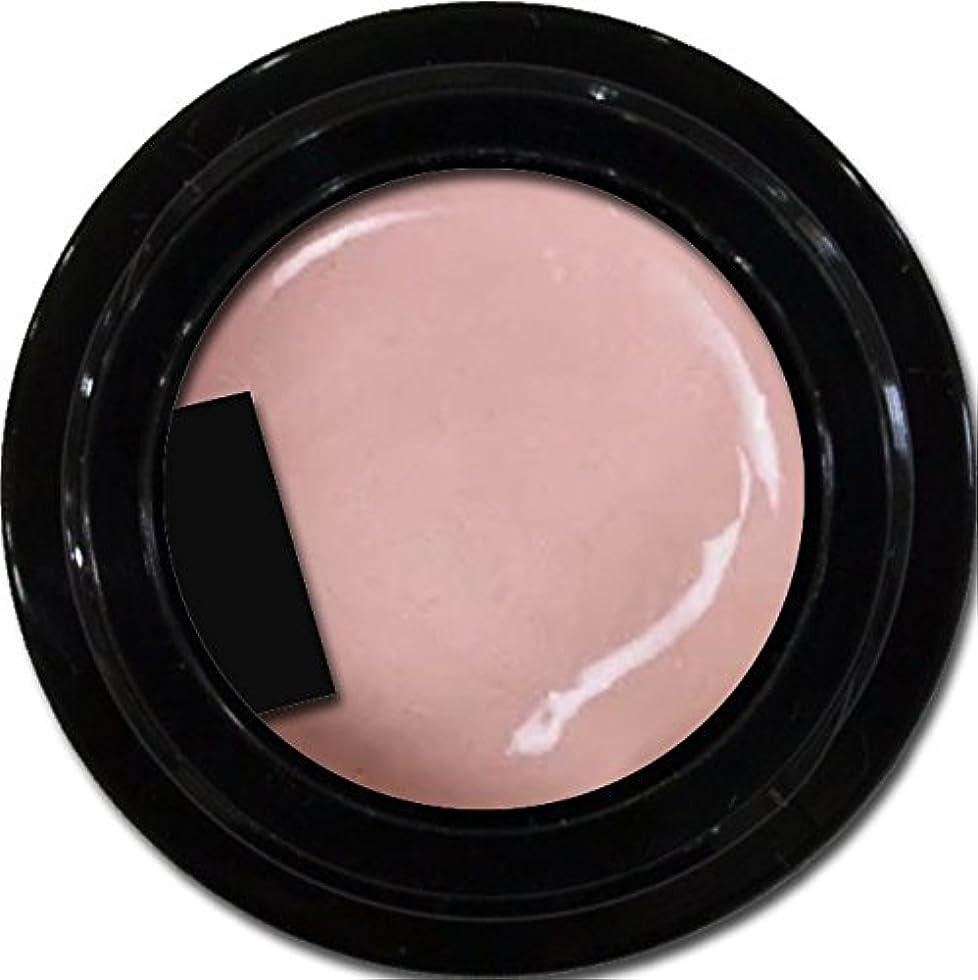栄光の図書館意気消沈したカラージェル enchant color gel P303 PeachPearl 3g/ パールカラージェル P303ピーチパール 3グラム