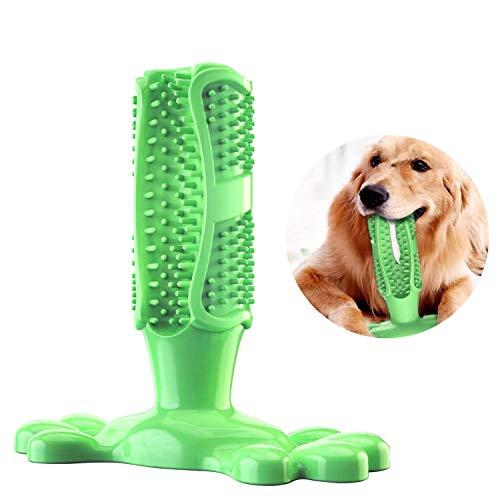 1x oder 2x Zahnreinigendes Hunde Spielzeug in der Größe nach