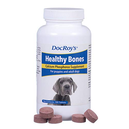 Best Bone Supplements for Dogs