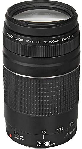 Canon EF 75–300mm f/4–5.6III Objetivo Zoom para Canon EOS 7d, 60d, EOS Rebel sl1, T1i, T2i, T3, T3i, T4i, T5i, XS, Xsi, XT, XTi cámaras réflex Digitales + Gamuza De Microfibra para La Limpieza