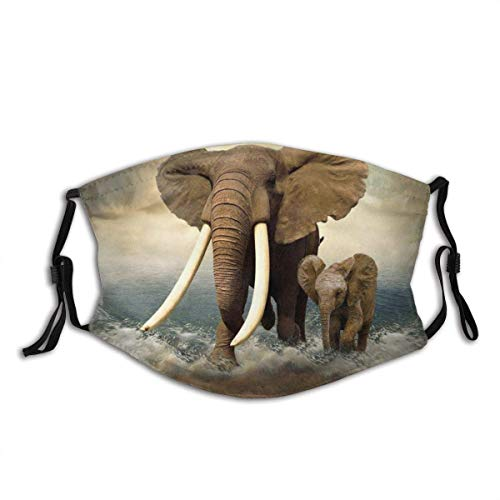 Elefant Grafikdruck Outdoor Gesicht Staubschutz