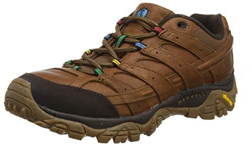 Merrell Moab 2 Earth Day, Zapatillas de Senderismo para Hombre, Marrón (Monks Robe), 41 EU