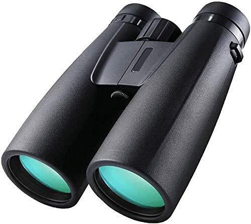YIQIFEI Binoculares Telescopio Estelar 10x42 Prisma de Techo Binocular para Adultos HD Binoculares Profesionales para observación de Aves T (artefacto al Aire Libre)