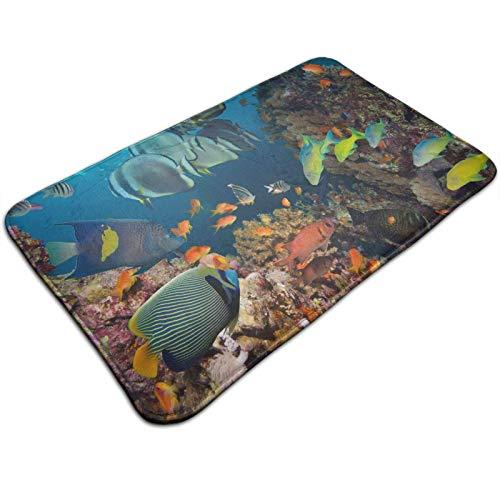 GOSMAO Felpudo de Entrada Alfombra Exterior para Puerta Impermeable Lavable Antideslizante Peces Tropicales y corales 40X60cm