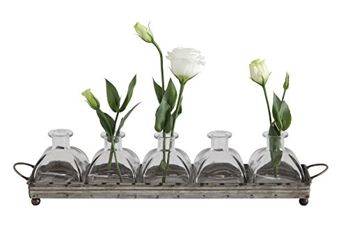 Creative Co-op Decorative Iron Rectangle Tray with Handles & 5 Glass Vases