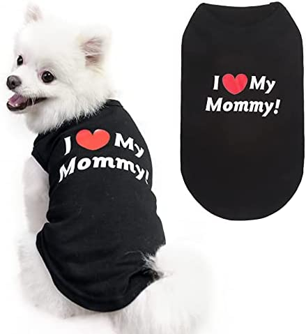 Dog clothes free shipping