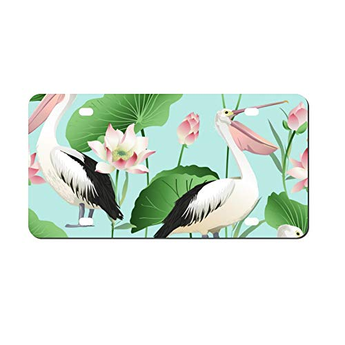 Tropical Exotic Print Pelicans Front Vanity Plate,Aluminum Car Tag Holder,Licesen Plate Frame,Auto Accessory Gifts