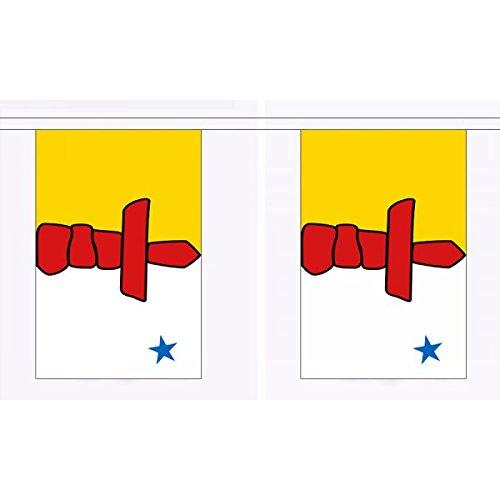 3 Meter 10 (22.86 cm x 15.24 cm), Nunavut Canada Kanada Flagge, 100{b68687e536b957208a4d954efb7b9a6d39cdd60c13eecdde1a56df872ae3b615} Polyester ideale Party Deko Wimpelkette für Street House Schulen, Kneipen und Clubs