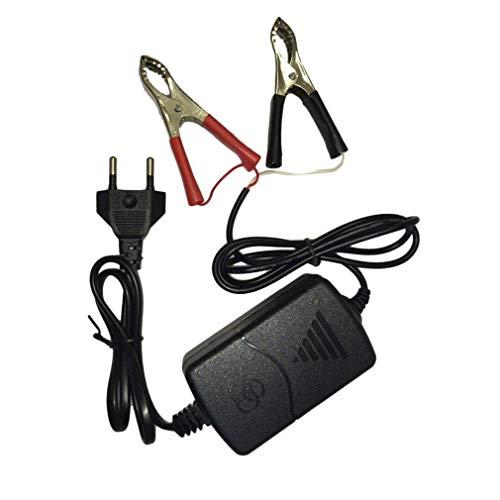 Auto Car Motocicleta ATV DC 12V / 1A 15W Cargador de batería Recargable multimodo portátil Universal Tender Maintainer (BlackEU)