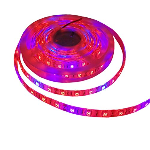Toogod 16.4ft/5m 5050 Waterproof LED Strip Plant Growing Light Red Blue 4:1 for Aquarium Greenhouse Hydroponic Pant Garden Flowers Veg Grow Light(Updated)
