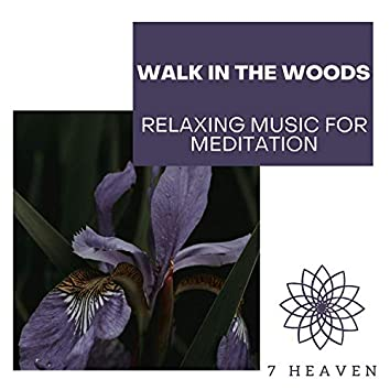 Walk In The Woods - Relaxing Music For Meditation