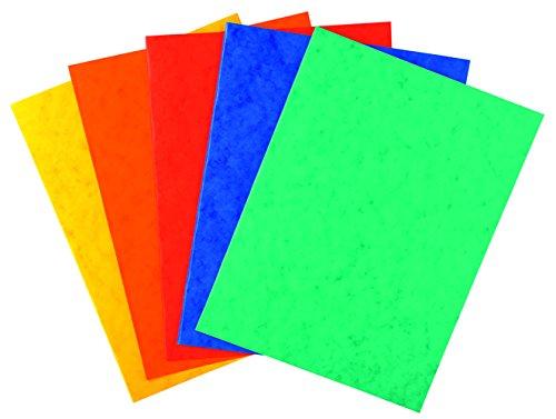 Exacompta 220000E Aktendeckeln Packung (mit 25 Aktendeckeln, Manila-Karton, 225 g, DIN A4, 21 x 29,7 cm) farbig sortiert