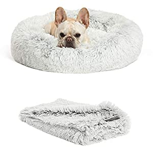 "Best Friends by Sheri Bundle Savings – The Original Calming Shag Donut Cuddler Dog Bed in Small 23″"" x 23″"" and Pet Throw Blanket in 30″"" x 40″"", Frost. (BND-DBT-SHG-FRS-23SM)"