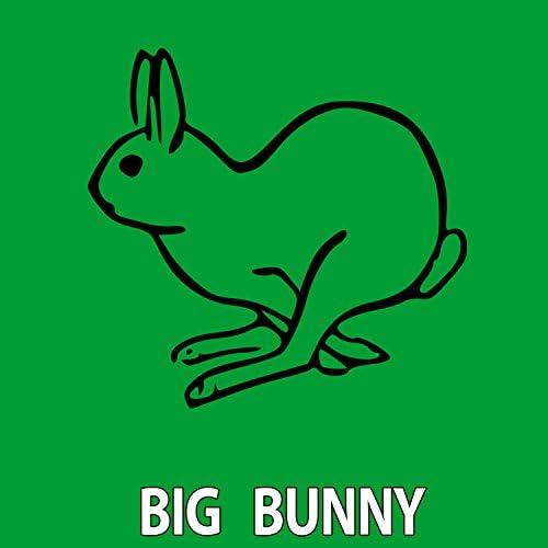 Rousing House, 21 ROOM & Big Bunny