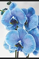 My Life, My Thoughts, My Journal: JD Dyola's Celebration of Life Collection™ (In Celebration of Flowers—Orchids) (Volume 3)