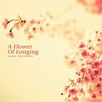 그리움의 꽃이 피다