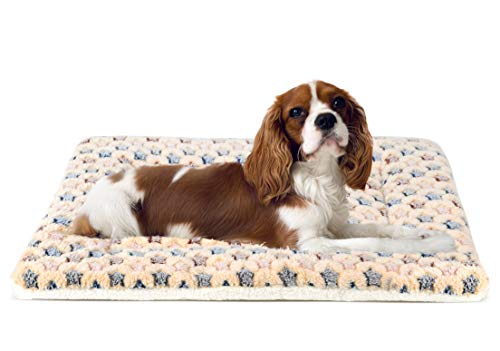 Cute Dog Pad Dog Pad