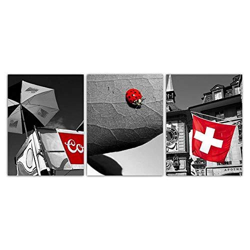 Terilizi poster grijs huis rode vlag landschap Scandinavische stijl canvas kunstdruk schilderij lieveheersbeestje muurschilderingen slaapkamer wooncultuur 50 x 70 cm x 3 geen lijst
