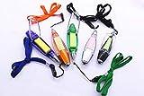 Tragbare Lanyard Kugelschreiber, Multi-Use-Stifte mit Beleuchtung, Haftnotizen für Party, Büro, außerhalb (5 Pack)