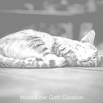 Gatti Addormentati (Strumentale)