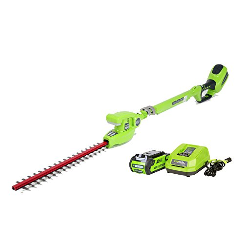 Greenworks 22272 Cordless Pole Hedge Trimmer