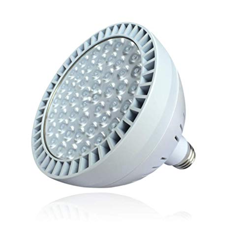 TOVEENEN LED Pool Light High Brightness White - 120V - 60W - 5400lm
