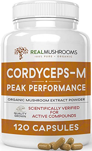Real Mushrooms Cordyceps Peak Performance Supplement for Energy, Stamina, Endurance (120ct) Non-GMO, Vegan Cordyceps Mushroom (60 Day Supply)