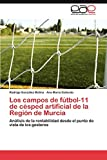 Los campos de fútbol-11 de césped artificial de la Región de Murcia: Análisis de la rentabilidad desde el punto de vista de los gestores