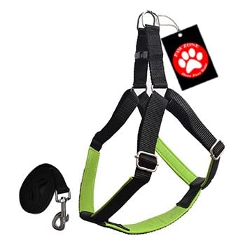Pawzone Durable & Adjustable Green Body Harness With Leash for Dogs(3/4Inch) - Medium