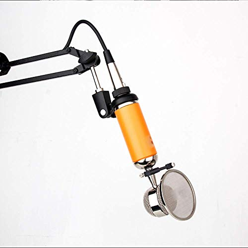 WSMLA Professionelle Hand Moving Coil-Mikrofon - Dynamisch Niere unidirektionale Vocal Built-in Acoustic Pop Filter Audiokabel an Audioanschluss Inklusive
